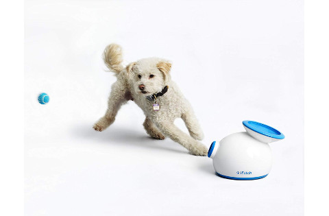 iFetch Interactive Ball Thrower
