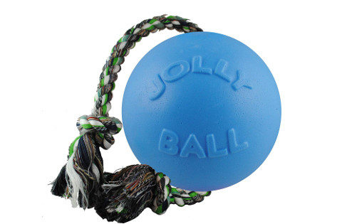 Jolly Pets Romp N Roll Ball